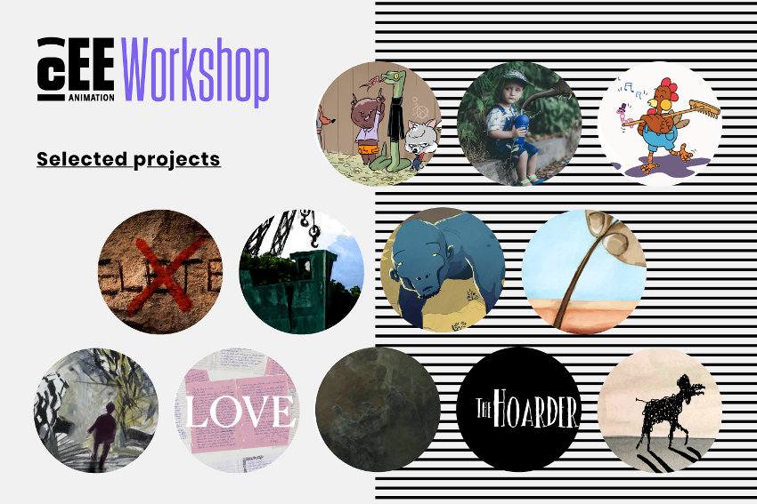CEEAWorkshop_projects